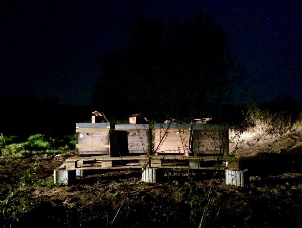 Nach dem Umzug um Mitternacht in Spielberg