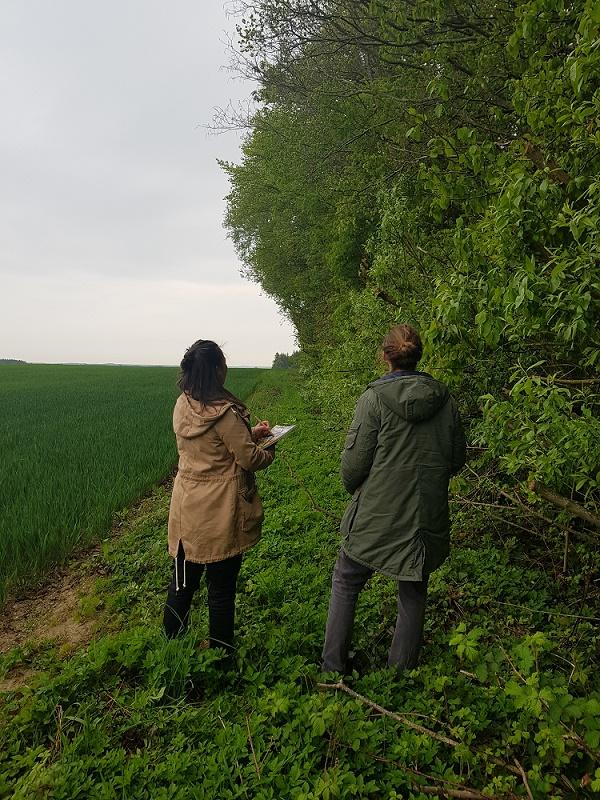 Zwei Personen, Feld, grün, Rücken zugewandt